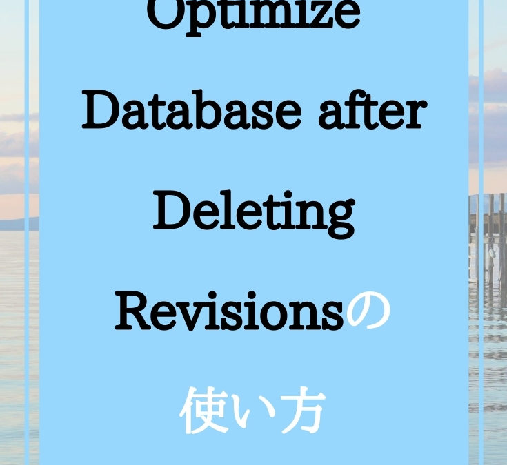 Optimize Database after Deleting Revisionsの使い方