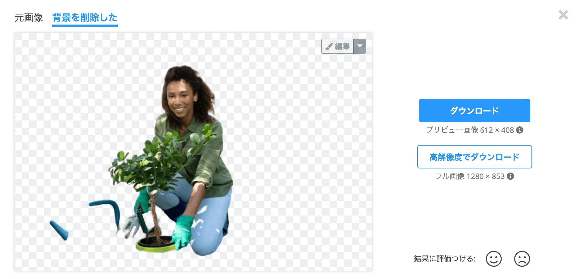 remove bgでうまく背景を透明化できない画像