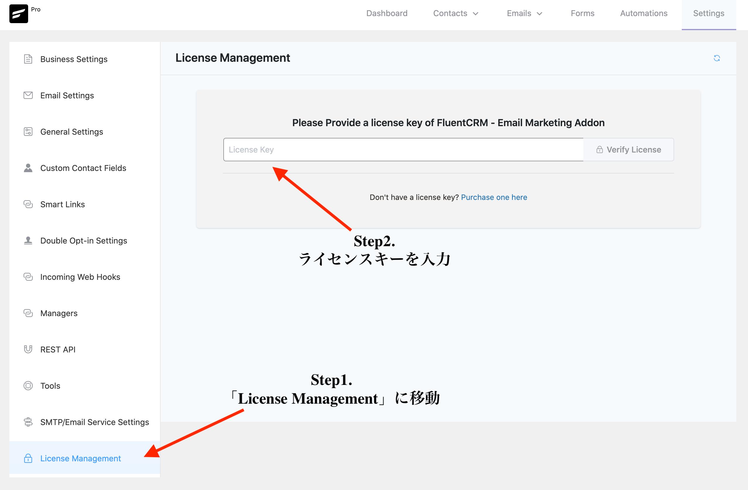 FluentCRM Proを有効化するためにライセンスキーを入力する